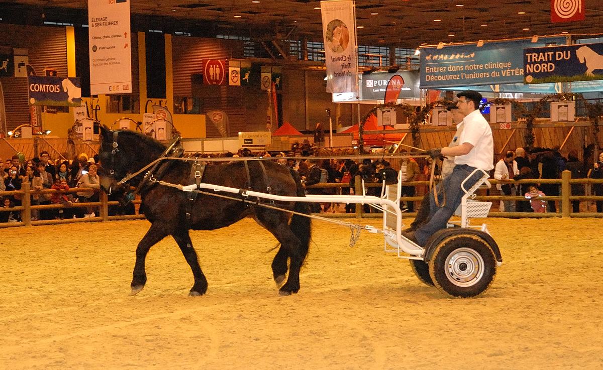 Salon de l 39 agriculture 2011 - Salons de l agriculture ...